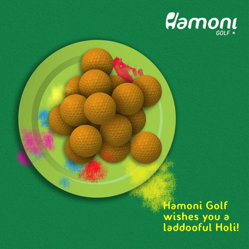 Hamoni Fb Holi
