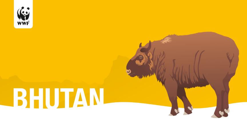 Wwf Bhutan